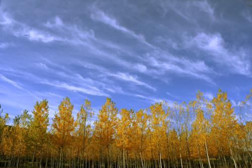 Citas para fotografiar el otoño: el nacimiento del Río Mundo