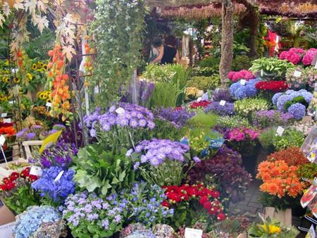 El mercado de flores en Ámsterdam