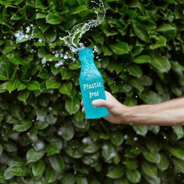 Empaques biodegradables, una esperanza para nuestro planeta y futuro