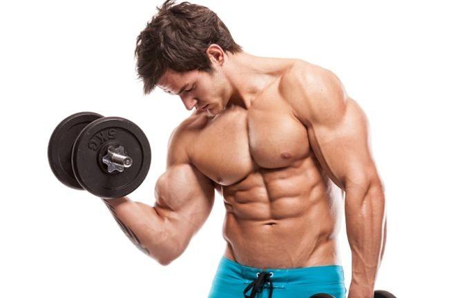 Top 3 Consejos Desarrollo Muscular Opt