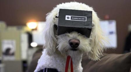 Tecnología y perros: impresión 3D, wearables y lo que queda por ver