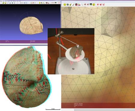 ¿Fósiles e impresoras 3D? Ya es posible gracias a un catálogo de 10.000 especímenes
