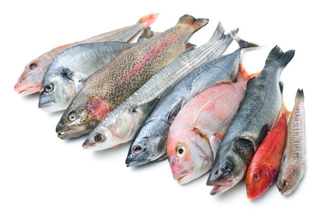 diferencias entre pescado blanco y azul