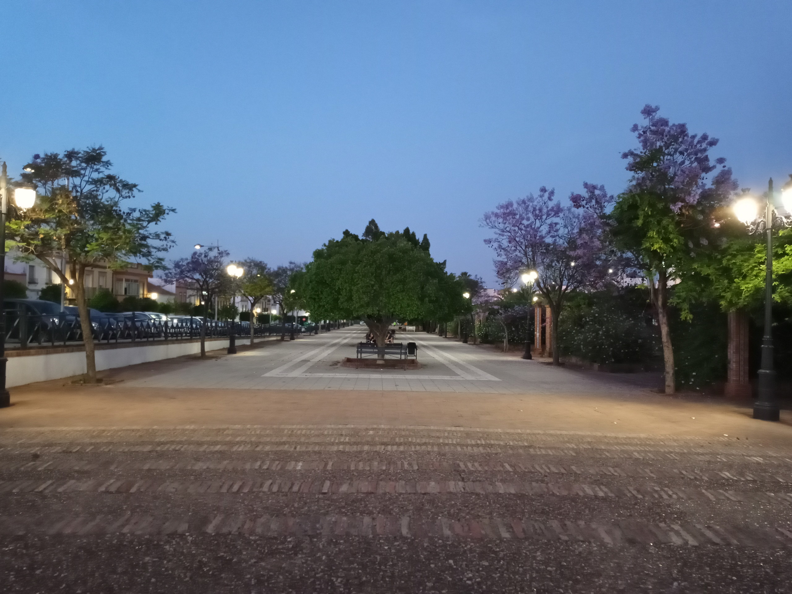 Foto de Más fotografías con el Sony Xperia L4 (31/42)