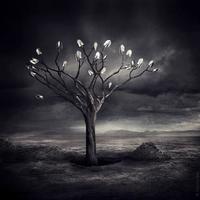 Sarolta Bán, magia en sueños de mundos imposibles