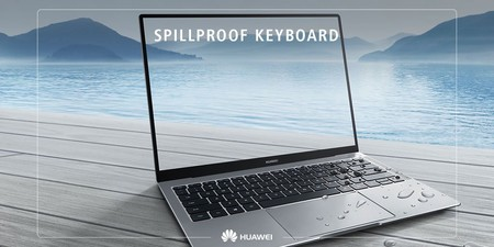 Matebook X Pro Ip