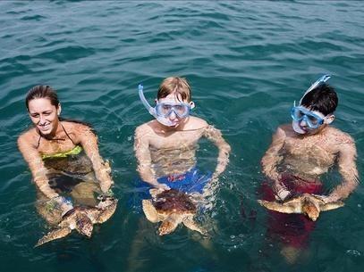 [Vídeo] Más de una decena de tortugas bobas liberadas en el Mar de Alborán