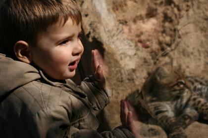 La foto de tu bebé: en el zoo