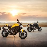 Ducati Monster 821, la hermana menor hereda los juguetes de la 1200