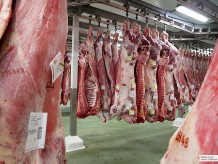 Un polémico estudio asegura que podemos seguir comiendo carne roja, pero ¿debemos creerlo?