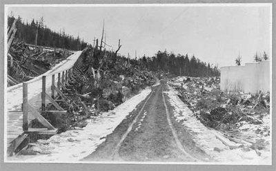 El día en que se decidió que las carreteras serían de madera