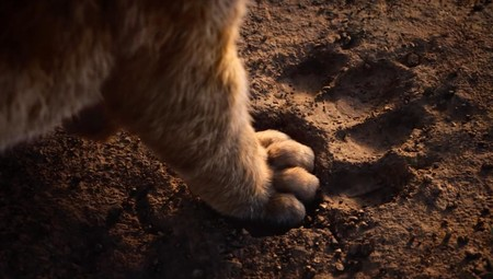 The Lion King Remake Simba Paw Via Disney Youtube 2019