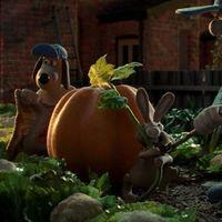 ¿Cómo se logran cultivar vegetales gigantes como una calabaza de más de mil kg?