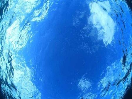 oceanyx.jpg