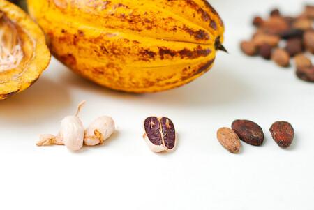 El origen mexicano del chocolate