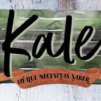 Todo lo que necesitas saber de la kale