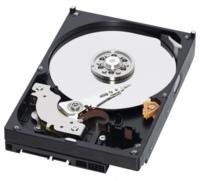 WD ya domina el mercado de los discos duros