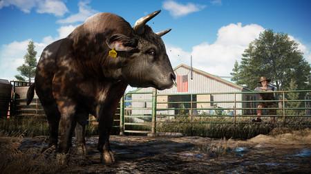 Este será el contenido de las tres ediciones diferentes de Far Cry 5