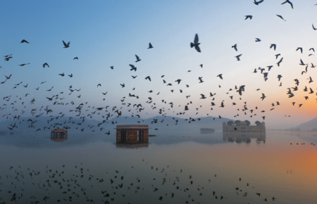 04 Jal Mahal During Sunrise