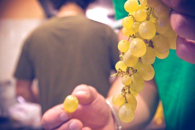 El origen de la tradición de las uvas de nochevieja - 1