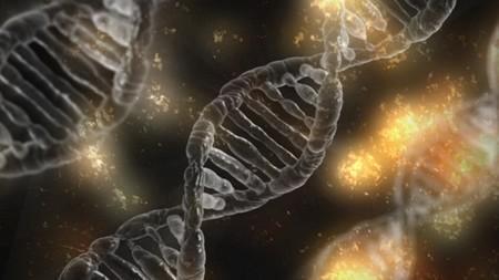 ¿Hay genes que no mueren cuando nosotros morimos?