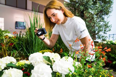 Sony A7, Canon EOS M6, Nikon D750 y más cámaras, objetivos y accesorios en oferta: Llega Cazando Gangas