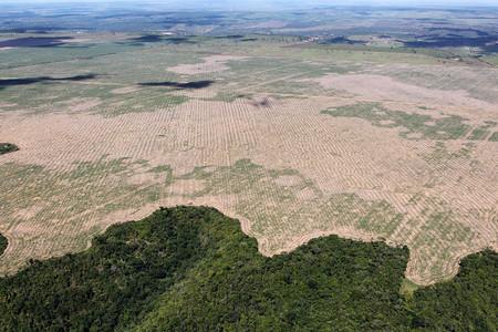 Deforestacion Carreteras 2