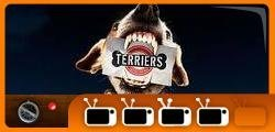 Terriers review