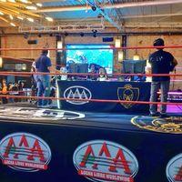 Lucha Libre AAA anuncia Torneo de Leyendas: su evento de esports con 'Street Fighter', 'The King of Fighters' y 'Smash Bros'