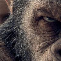 ButakaXataka: El planeta de los Simios: La Guerra