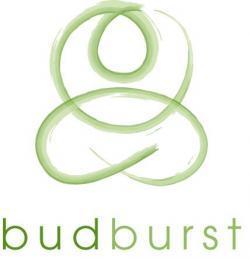 Proyecto BudBurst: ciencia por ciudadanos