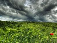 Algunos consejos para fotografiar paisajes