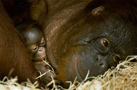 Foto de Reuters 2007 (8/16)