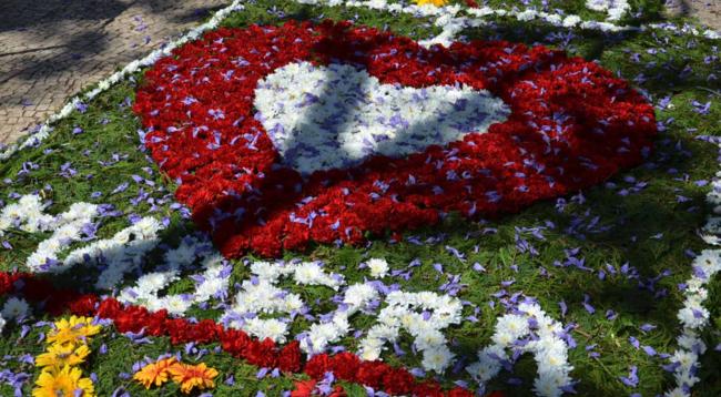 Festa Da Flor 5
