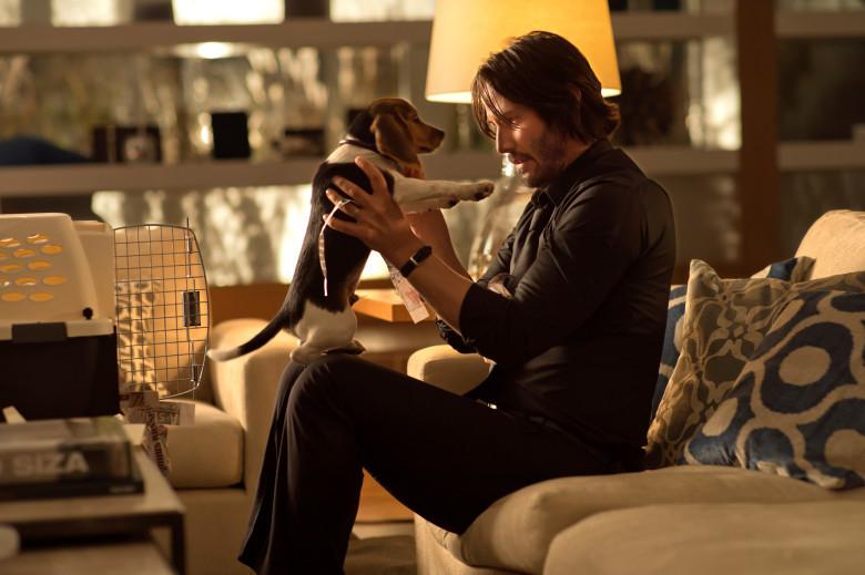 John Wick Puppy Still
