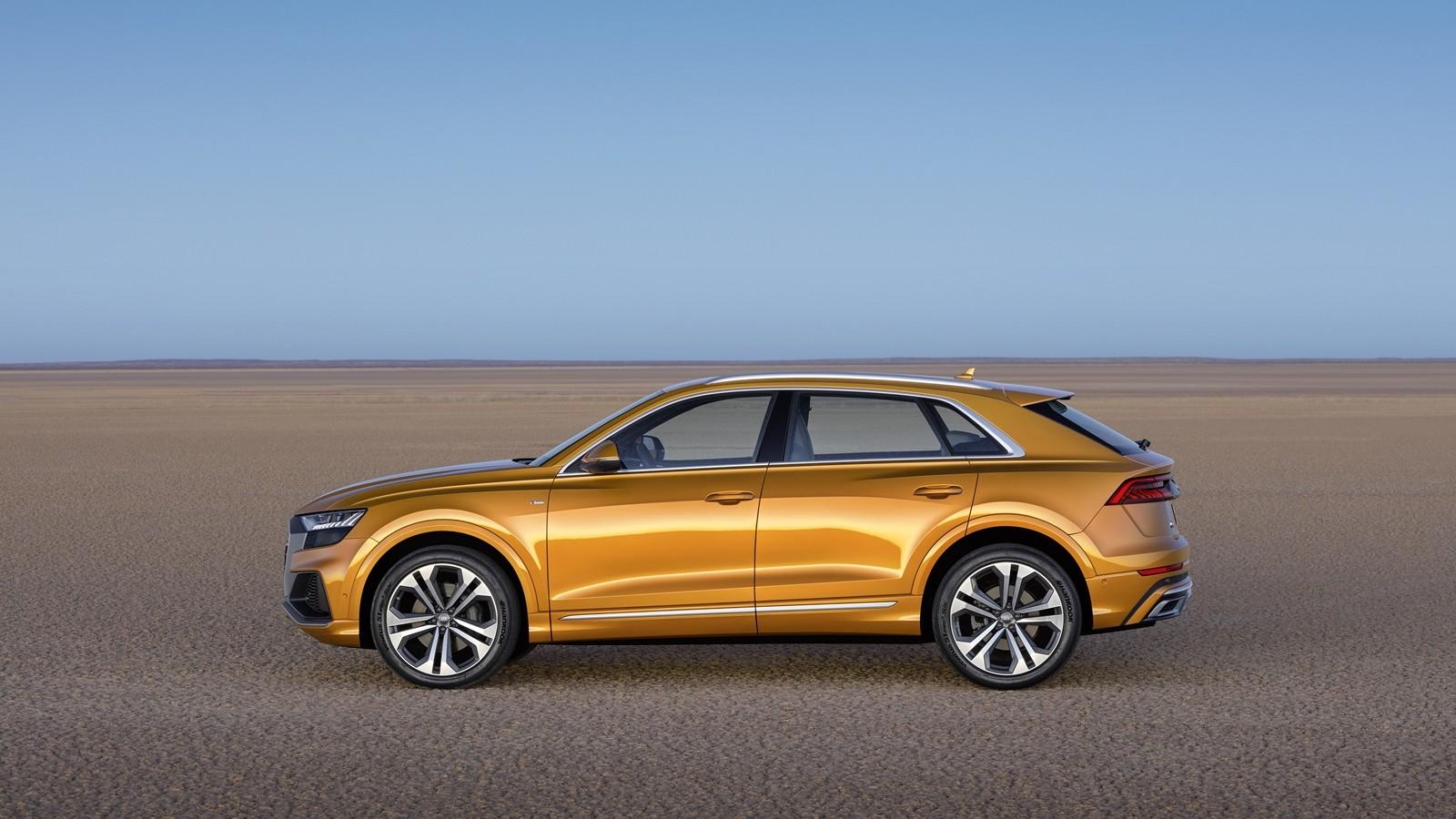 Foto de Audi Q8 2019 (16/33)