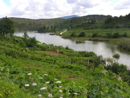 1024px Rio Umia Dende Paradivas Caldas De Reis Galiza