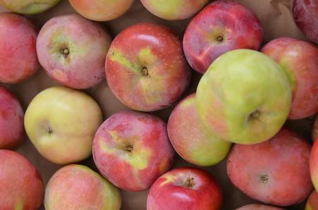 manzana macintosh