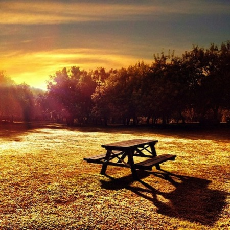 Sunrise, The Bench Series