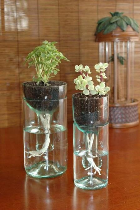 Mini jardín de hierbas finas para espacios reducidos