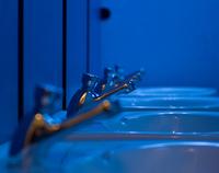 Las manos, el jabón y la higiene