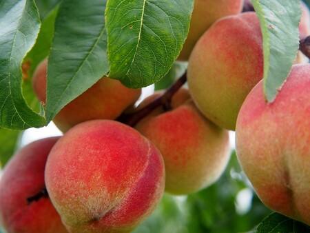 Que Fruta De Temporada Hay En Octubre Y Como Aprovecharla Durazno