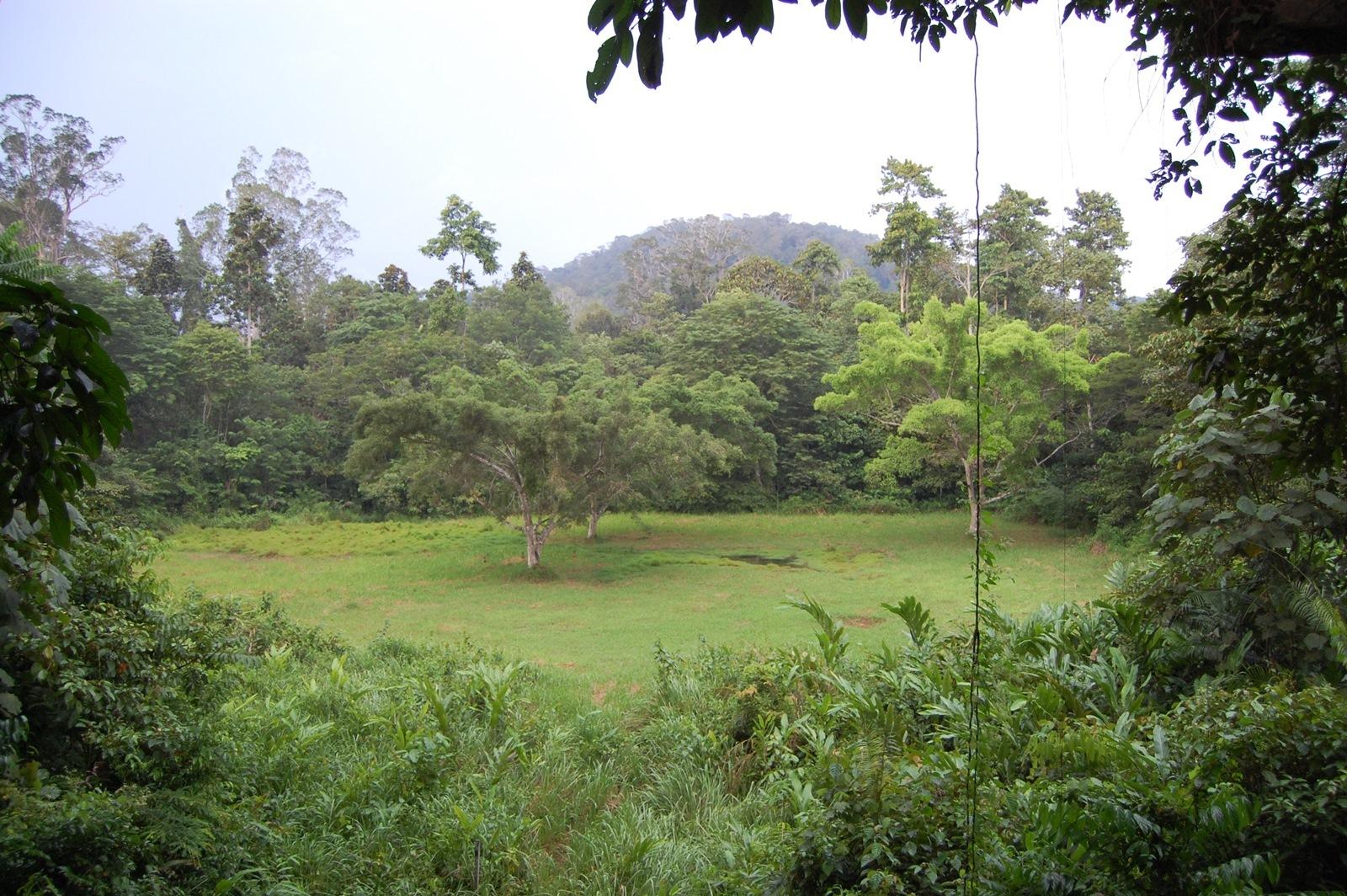 Foto de Visitando Malasia 5º y 6º días (56/77)