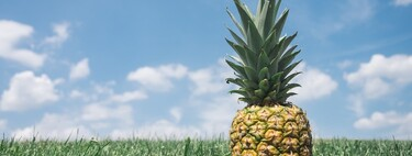 Ventajas y desventajas de bajar de peso con la dieta de la piña