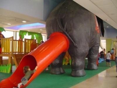 Los elefantes también juegan