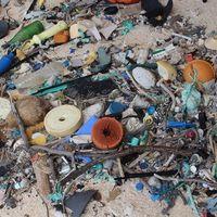La mayor densidad de desechos plásticos del mundo está en una isla