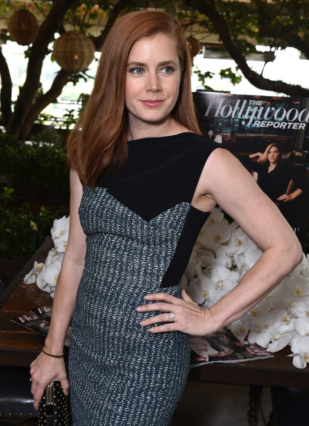 celebrities rubio pelirrojo melena cabello pelo amy adams