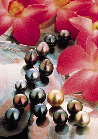 La perla, una joya natural (y III): la perla negra de Tahití cumple 50 años