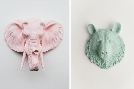 animales colores elefante oso