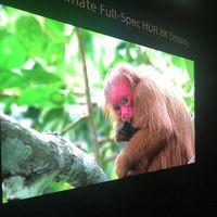 El último prototipo de Sony luce unos espectaculares 10.000 nits con panel 8K de 85 pulgadas